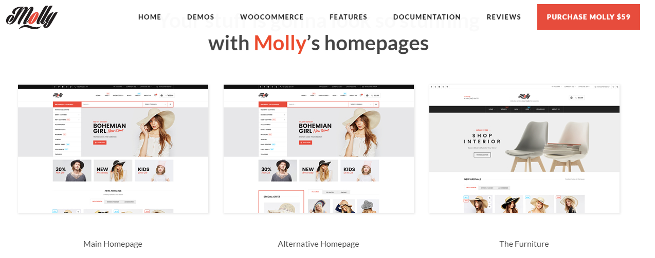 molly-theme-wordpress-theme-for-mecdical-theme-for-healthy-theme-for-hospital-theme-for-cilinic-theme-for-care